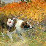 Комаров А. Собака-санитар, 1947_result_06