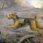 Комаров А. Собака военная, 1947_result_05