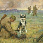 Комаров А. Собаки миноискатели, 1947__result_07