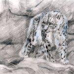 ckst_Грибоедова Екатерина, 15 лет Снежный барс РФ, Иркутская область, г. Бирюсинск