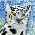 ckst_Мацехина Анна, 15 лет Снежный барс Республика Казахстан, Восточно-Казахстанская область, г. Риддер