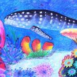 Хохлова Елизавета, 12 лет Китовая акула РФ, Ивановская область, г. Вичуга