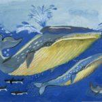 Смирнова Наталия, 12 лет Голубой кит РФ, Нижегородская область, г. Дзержинск