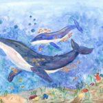 Стародумова Софья, 13 лет Синий кит РФ, Камчатский край, г. Елизово