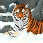 Лимасова Софья, 14 лет Амурский тигр РФ, Новосибирская область, г. Татарск